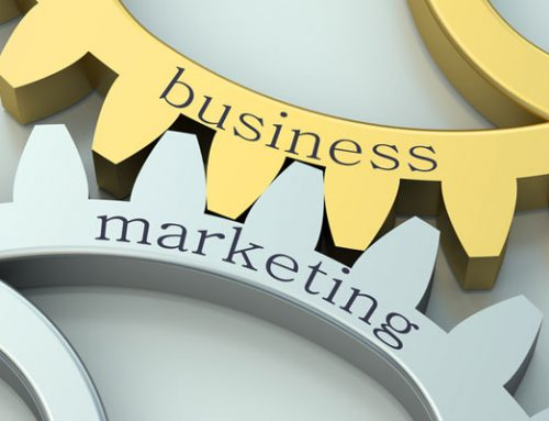 Marketing + Business